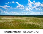 Summer Landscape With A Field ...