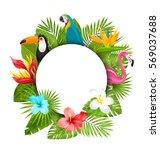 illustration summer clean card... | Shutterstock .eps vector #569037688