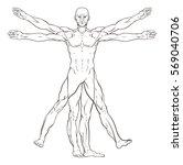vitruvian man style human... | Shutterstock .eps vector #569040706
