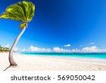 beautiful tropical white beach... | Shutterstock . vector #569050042