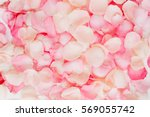 Stock photo pink rose petals valentine s day background flat lay top view 569055742