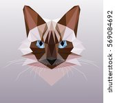 vector cat in a polygon style. ... | Shutterstock .eps vector #569084692