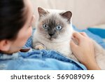 young woman with cute cat at...   Shutterstock . vector #569089096