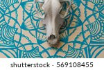dog skull lies on the... | Shutterstock . vector #569108455