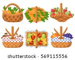 collection basket carrot... | Shutterstock .eps vector #569115556
