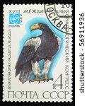 ussr   circa 1982  a stamp... | Shutterstock . vector #56911936