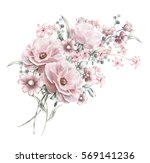 watercolor flowers. floral... | Shutterstock . vector #569141236