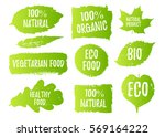 vector natural  organic food ... | Shutterstock .eps vector #569164222