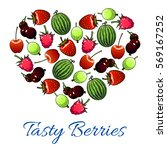 berries and fruits poster in... | Shutterstock .eps vector #569167252