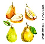 set with a pear in a cut ... | Shutterstock . vector #569206306