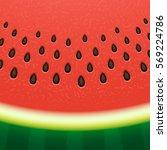 watermelon background.   Shutterstock .eps vector #569224786