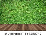 wood plank floor and tree | Shutterstock . vector #569250742