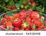 Juicy Strawberry Fruit In...