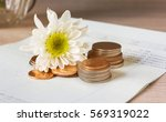 coins and flower on book bank... | Shutterstock . vector #569319022