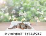 coins and flower on book bank... | Shutterstock . vector #569319262