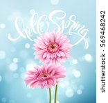 gerbera flower background and... | Shutterstock .eps vector #569468242