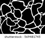 jungle print skin spot giraffe...   Shutterstock .eps vector #569481745