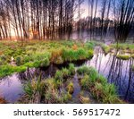 sunrise over beautiful spring... | Shutterstock . vector #569517472