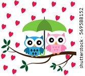 two owls sitting on the branch... | Shutterstock .eps vector #569588152