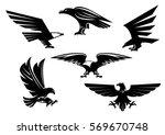 vector heraldic eagle or hawk... | Shutterstock .eps vector #569670748
