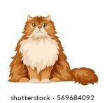 vector illustration of a fluffy ... | Shutterstock .eps vector #569684092