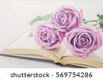 Close Up Of Violet Purple Rose...