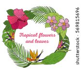 tropical flowers and leaves.... | Shutterstock .eps vector #569815696