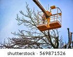 Tree Pruning And Sawing By A...