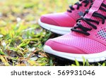 running shoes pink. blur and... | Shutterstock . vector #569931046