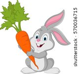 rabbit with carrot isolated on... | Shutterstock .eps vector #570036715