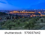 olive trees on the mount of... | Shutterstock . vector #570037642