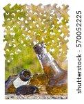 smashed bottle of beer resting... | Shutterstock . vector #570052225