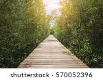 Nature Trail  Boardwalk In...