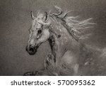 drawn portrait of running horse | Shutterstock . vector #570095362