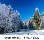 winter forest with frozen trees ... | Shutterstock . vector #570141232