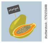 vector fruit   papaya | Shutterstock .eps vector #570153688