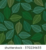 vector seamless background with ... | Shutterstock .eps vector #570234655