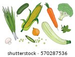 vegetables and herbs organic