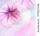 watercolor and flowers abstract ... | Shutterstock . vector #570327436