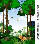rainforest vector illustration. ... | Shutterstock .eps vector #570364705