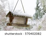 Frozen Bird Feeder With Icycle...