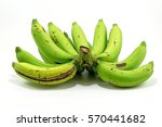 Green Banana On White...