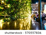 selective focus on bush and... | Shutterstock . vector #570557836