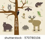 Good Vector Set Of Cute Forest...