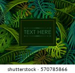 abstract exotic tropical leaf... | Shutterstock .eps vector #570785866