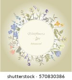botanical flowers and herbs.... | Shutterstock .eps vector #570830386