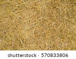 Dry Yellow Straw Grass...