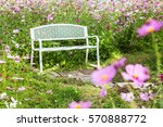 White Wood Bench In Cosmos...