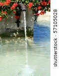 Fountain With Red Flowers On A...