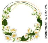 realistic jasmine flowers.... | Shutterstock .eps vector #571254496